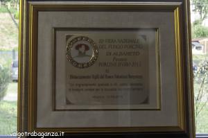 Porcino d'oro 2015 Albareto (141)