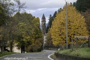 foliage (143) Boschetto