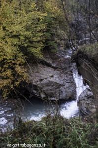 Diga Montegroppo (172) foliage