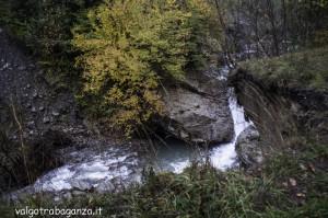 Diga Montegroppo (173) foliage