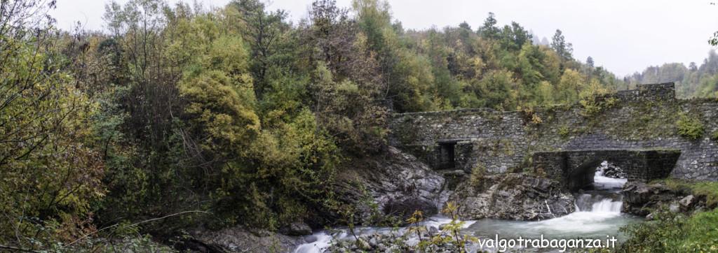 Diga Montegroppo (179) foliage