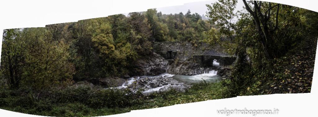 Diga Montegroppo (181) foliage