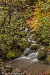 Foliage Ruscello (110) Rio Biselle