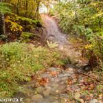 Foliage Ruscello (130) Rio Biselle