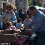 Folta (147) Festa Castagna