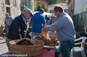 Folta (236) Festa Castagna