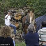 Riserva Ghirardi Oasi WWF (324)