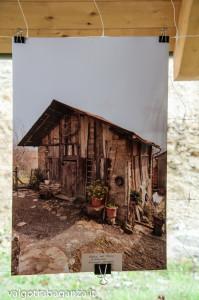 architettura del Bosco (107) mostra