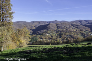 Albareto (100) foliage autunno
