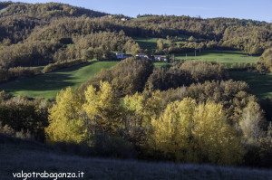 Albareto (125) foliage autunno