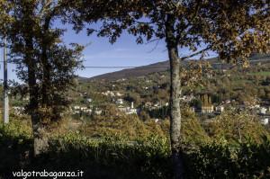 Albareto (137) foliage autunno