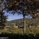 Albareto (138) foliage autunno