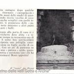 Castagne, Castagnaccio (101)