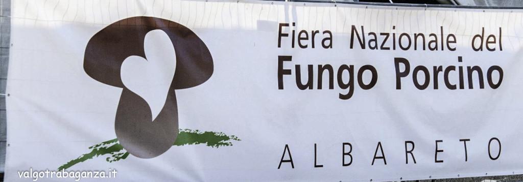 Fiera Nazionale Fungo Porcino Albareto 2016