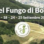 Fiera del Fungo di Borgotaro 2016