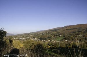 Foliage Val Gotra (113)