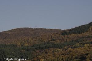 Foliage Val Gotra (114)