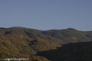 Foliage Val Gotra (122)