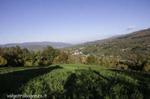 Foliage Val Gotra (152)