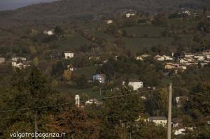 Foliage Val Gotra (166)