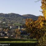 Valtaro (220) Foliage