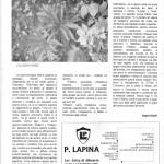 ALBARETO INFORMA (1) Elleboro