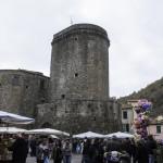 Fiera di San Martino (127) Varese