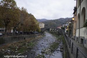 Fiera di San Martino (178) Varese