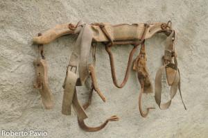 Giogo animali (100)