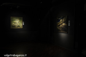 Museo Pier Maria Rossi Berceto (112) Mostra,