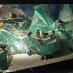 Presepe L'era glaciale (111) Berceto