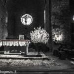 Berceto (113) Natale