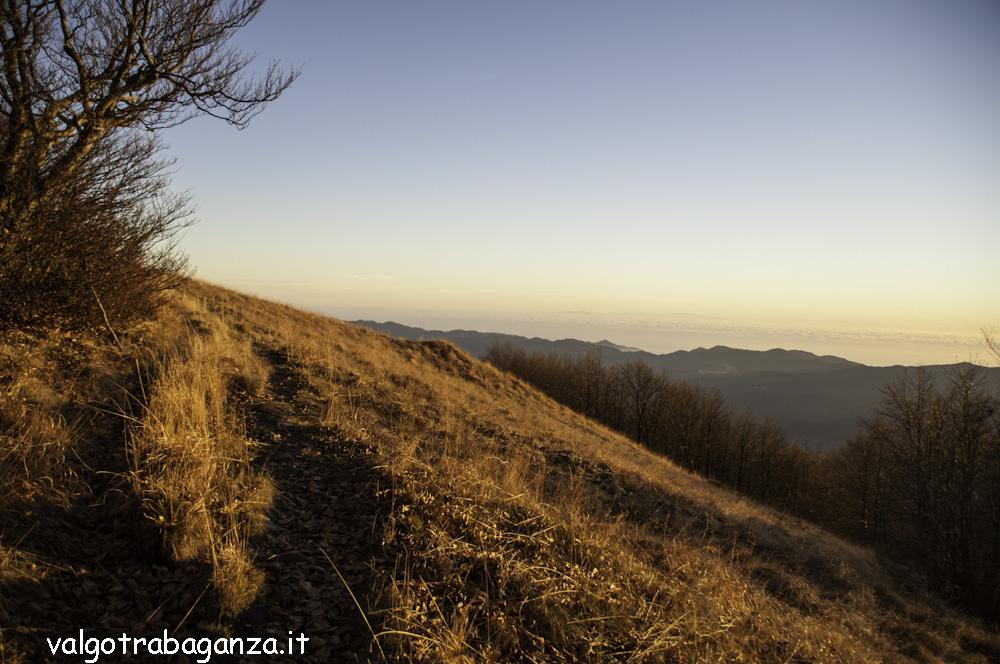 Monte Gottero (177) prato