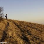 Monte Gottero (184) crinale