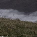 Passo Cappelletta (124) nebbia JPG