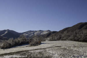 Poiana (111) Val Gotra