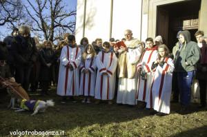 Sant'Antonio Abate (197) Porcigatone