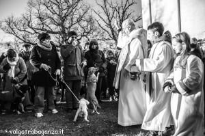 Sant'Antonio Abate (200) Benedizione