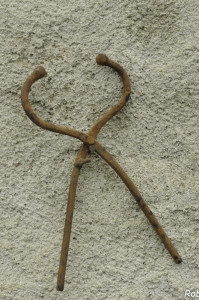 Muraia (101) museruola