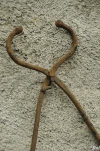 Muraia (102) museruola
