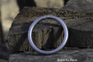 anello da toro (101)