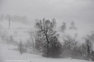 inverno Albareto (123) neve