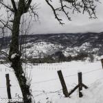 inverno Albareto (169) neve
