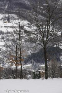 inverno Albareto (185) neve