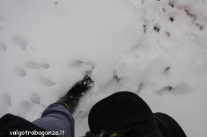 inverno Albareto (282) neve