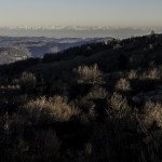 Alpi dai rilievi Appennino (102) Berceto