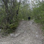 Abbots Way (102) Bardi