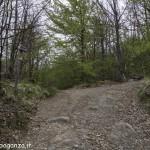 Abbots Way (105) Bardi