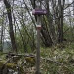 Abbots Way (106) Bardi