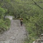 Abbots Way (115) Bardi